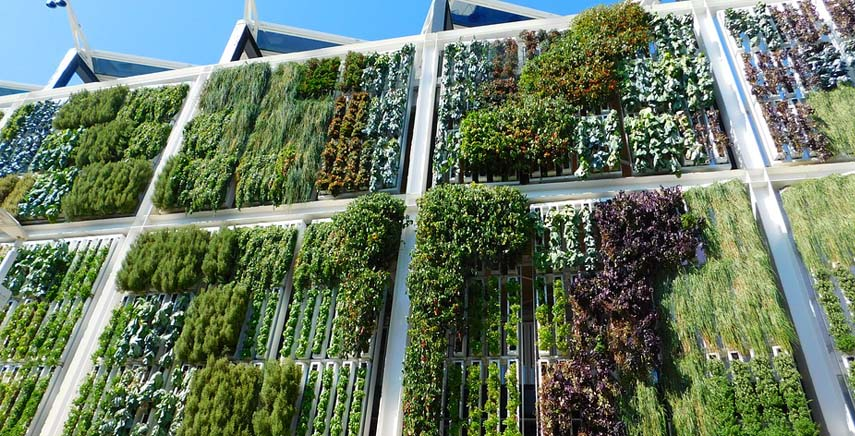 Il verde in edilizia per ridurre l'inquinamento